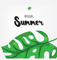 hello summer holiday greeting card with monstera vector image vector image