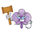 judge orchid flower mascot cartoon vector image vector image