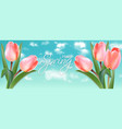 spring tulip flowers on sky background vector image
