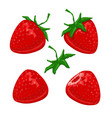 strawberry berries set vector image vector image