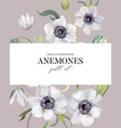 wedding anemones floral pastel realistic pattern vector image