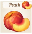 Peach Detailed Icon vector image vector image