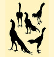 roosters gesture silhouette 01 vector image vector image