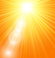 Sun burst with flare vector image vector image