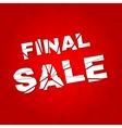 Final sale banner Sale discount vector image