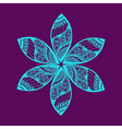 floral ornament decoration vector image vector image