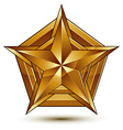 Heraldic template with five-pointed golden star vector image vector image