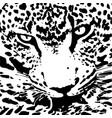 jaguar walking from dark logo design vector image vector image
