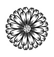 marigold flower floral hand drawn design sign vector image vector image
