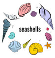 seashells composition beautiful ocean vector image vector image