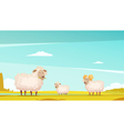 Sheep Grazing On Farmland Cartoon Poster vector image