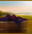 vat with grapes vector image vector image