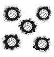 volleyball sport balls halftone icons vector image