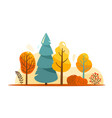 autumn tree abstract bright vector image