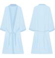 blue bathrobe vector image