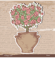 Bush of roses vector image vector image