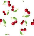 cherries seamless pattern polygonal vector image