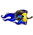 goat head skull with flames vector image