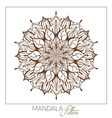 Monochrome Mandala Decorative round ornament vector image