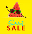 summer sale banner with watermelon character vector image vector image