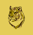 tiger walking from dark logo design vector image