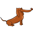 cute dachshund dog cartoon vector image vector image