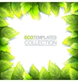 Eco Template vector image vector image