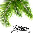 lettering text summer with palm leaves vector image
