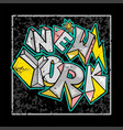 new york graffiti vector image vector image