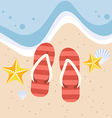 Slippers with starfish and shell on the beach vector image vector image