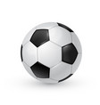 soccer ball realistic isolated vector image vector image