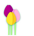 three paper cut tulips on white background vector image