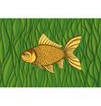 Goldfish on a background of green algae vector image