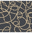 Cable pattern vector image vector image