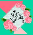hello spring 2 vector image