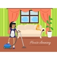 House Cleaning Banner vector image vector image