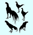 roosters gesture silhouette 03 vector image
