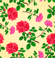 Seamless texture twig red and pink roses vector image vector image