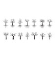 set black trees with roots outline vector image vector image