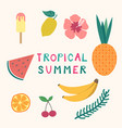 set of tropical summer elements ice cream fruits vector image