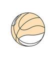 sport basketball ball vector image vector image