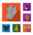 wild animal flat icons in set collection for vector image vector image