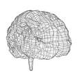 3d outline brain rendering of 3d vector image vector image