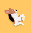 adorable beagle dog lying in overturn position vector image vector image