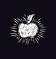 apple in linocut style vector image vector image