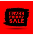 Black Friday Sale grunge stain on red background vector image vector image