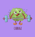 cabbage weight lifter cartoon vegetable ill vector image vector image