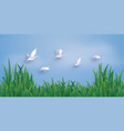 ducks are flying into sky vector image
