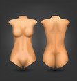 female dummy or woman naked body vector image vector image