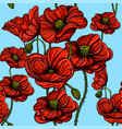 seamless pattern with red poppies hand-drawn vector image vector image